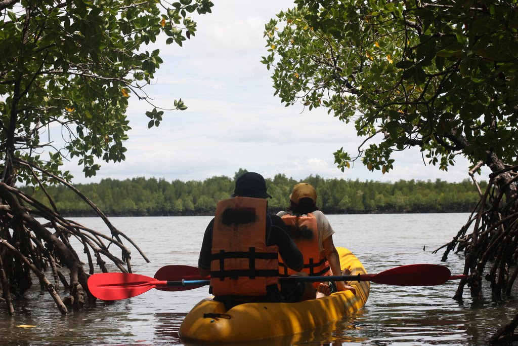 siamsmiletravel-Koh lanta yai mangrove and kayak